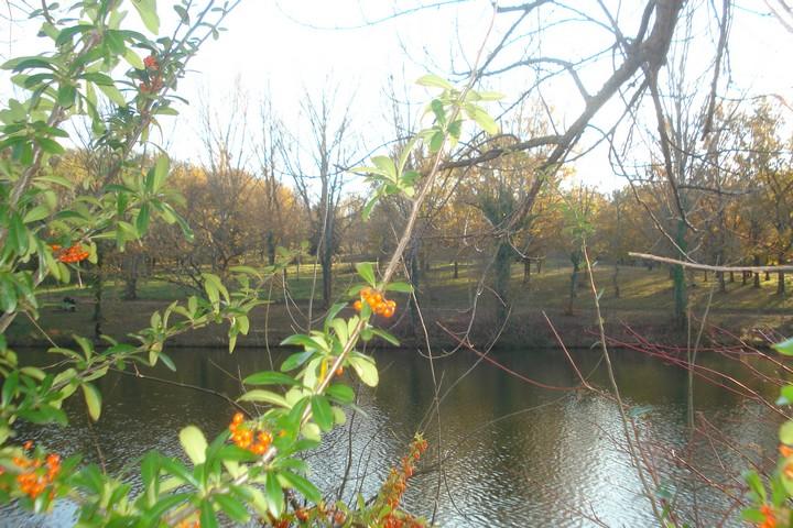 lac flourens